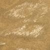 004-Gold (D-4402)