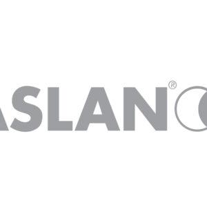 Aslan gray logo