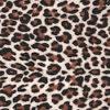 008 Leopard