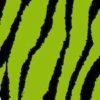 069 Green Zebra